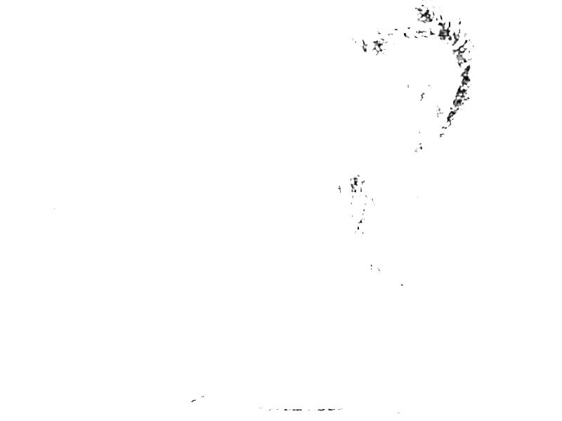 Maxim Gorki. Zeichnung nach einer Fotografie; entnommen Band 5 der »Bibliothek des allgemeinen und praktischen Wissens« (1905), Abriß der Weltliteratur, Seite 85.
